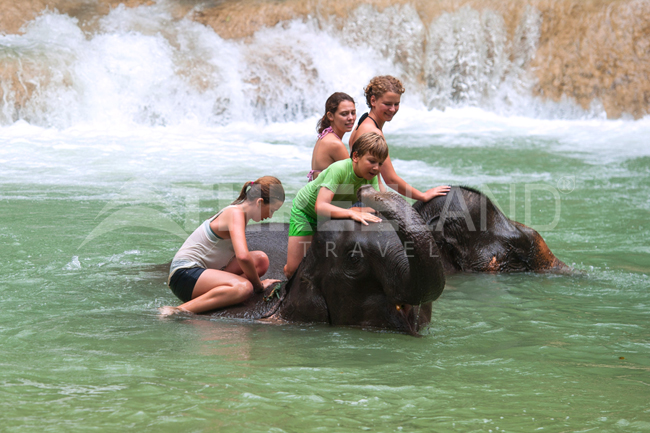 Elephant Ride, Tad Sae Waterfall