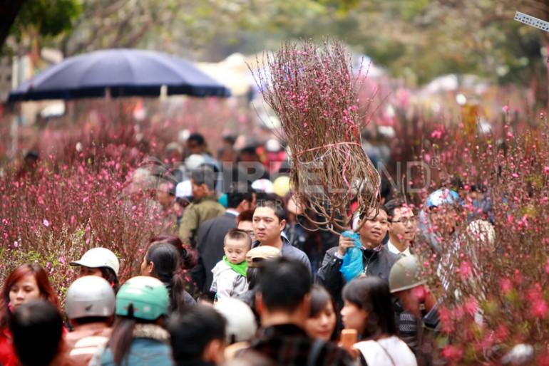 Tet festival in Hanoi